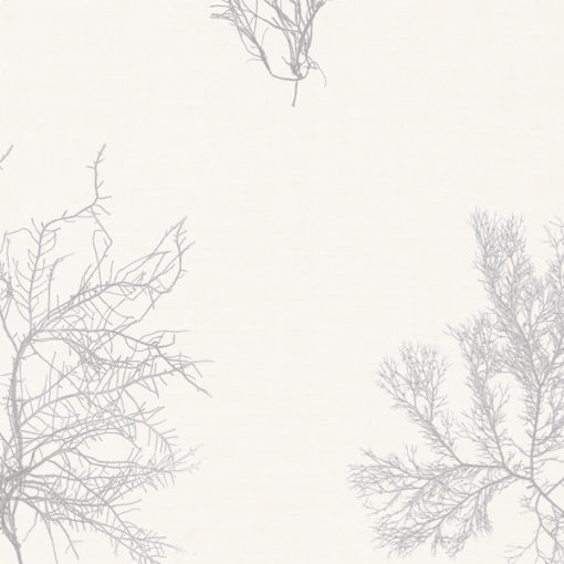 Ceramium_Oyster-linen-blend_Dust.jpg