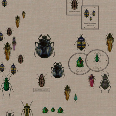 Entomologie-Beetle-Drawer_Natural-linen-blend_Original.jpg