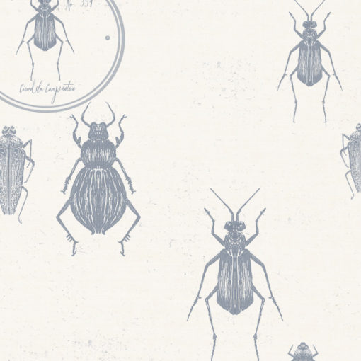 Entomologie-Beetle-Drawer_Oyster-linen-blend_Ink.jpg