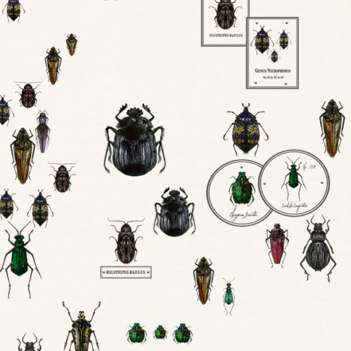 Entomologie-Beetle-Drawer_Oyster-linen-blend_Original.jpg