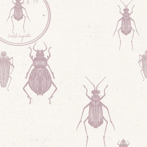 Entomologie-Beetle-Drawer_Oyster-linen-blend_Rose.jpg