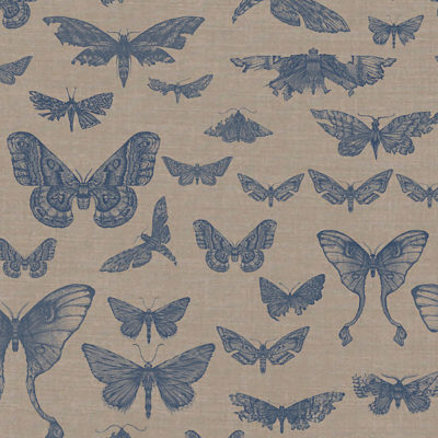 Entomologie-Moth-Drawer_Natural-linen-blend_Ink.jpg