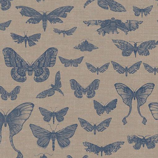 Entomologie-Moth-Drawer_Natural-linen-blend_Ink.jpg