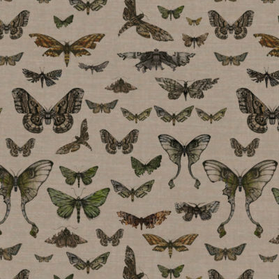 Entomologie-Moth-Drawer_Natural-linen-blend_Original.jpg