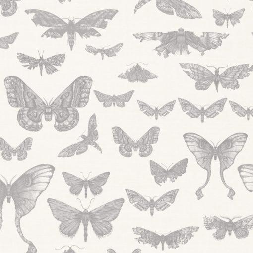 Entomologie-Moth-Drawer_Oyster-linen-blend_Dust.jpg