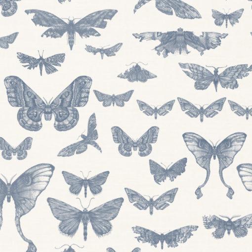 Entomologie-Moth-Drawer_Oyster-linen-blend_Ink.jpg