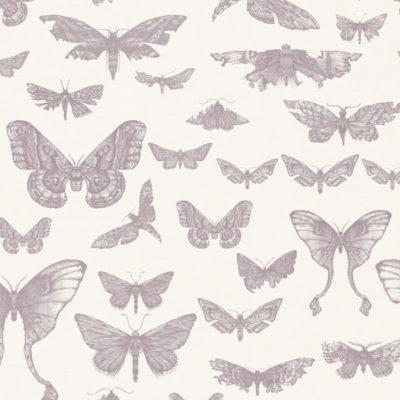 Entomologie-Moth-Drawer_Oyster-linen-blend_Rose.jpg