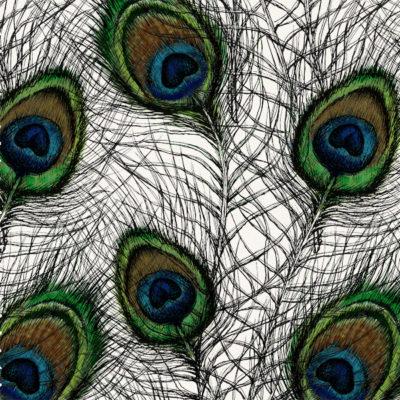 Pavo-Complex-Feathers_Oyster-linen-blend_Original.jpg