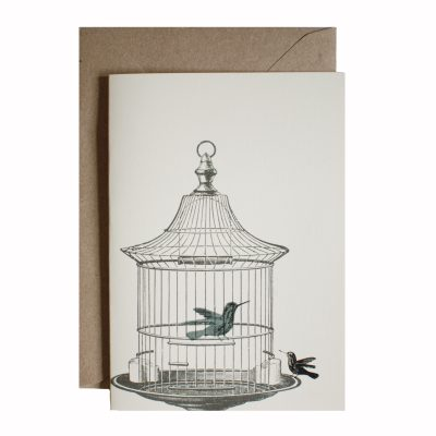 caged hummingbird