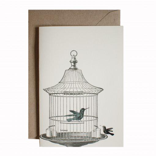 caged hummingbird