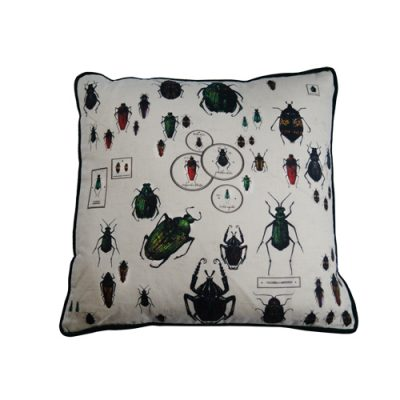 Cushion Entomology Beetle