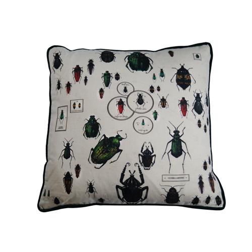Cushion Entomology Beetle