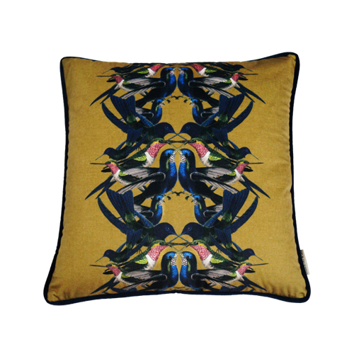 Cushion Hummingbird Husk