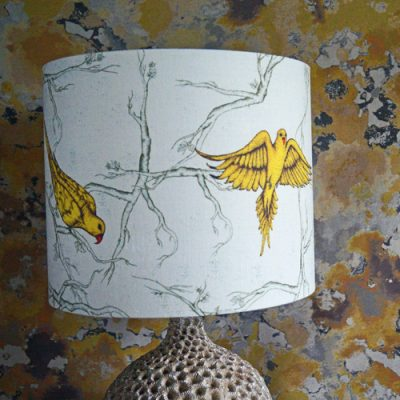 The Oxford Parakeet Drum Lampshade